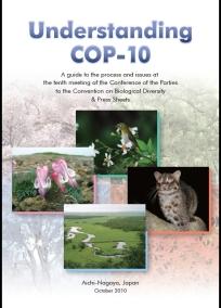 Understanding COP10