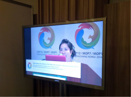 GYBN's Melina Sakiyama addressing delegates and COP12 participants at the COP12 UNDB Day