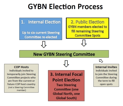 GYBN Election Process - Graphic