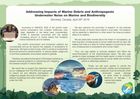 GYBN-SBSTTAInterventionon_Addressing Impacts of Marine Debris
