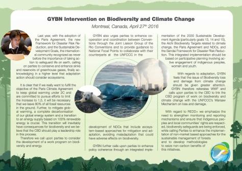 GYBN-SBSTTAInterventionon_BiodiversityandClimateChange_01