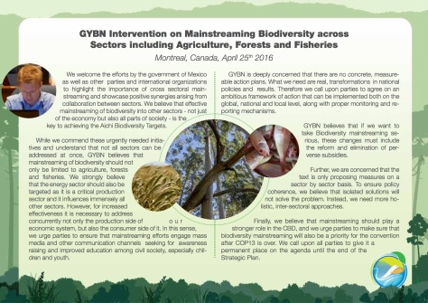 GYBN-SBSTTAInterventionon_Mainstreaming Biodiversity across Sectors