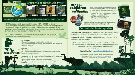 photo-campaign-spanish