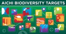 BIG_7751-Aichi_Biodiversity_Targets_978x509