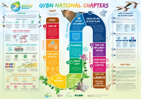 GYBN_National_Chapters_06
